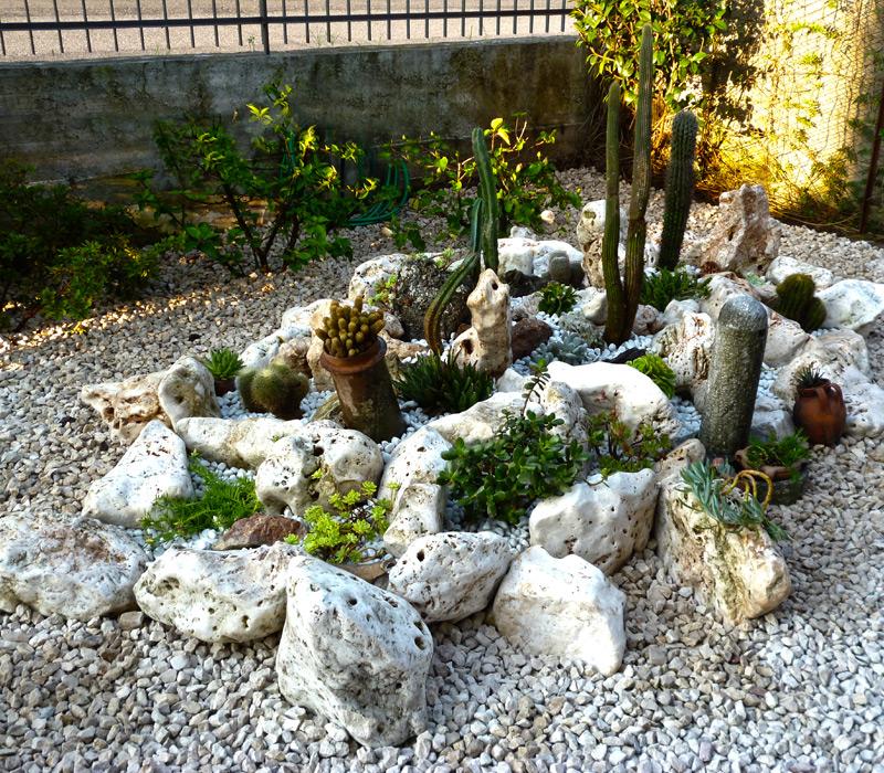 Lavori realizzati gaia la multiservizi dal pollice verde for Giardino roccioso con piante grasse