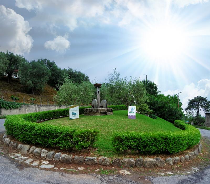 cura verde pubblico san Giorgio Morgeto olearia san giorgio