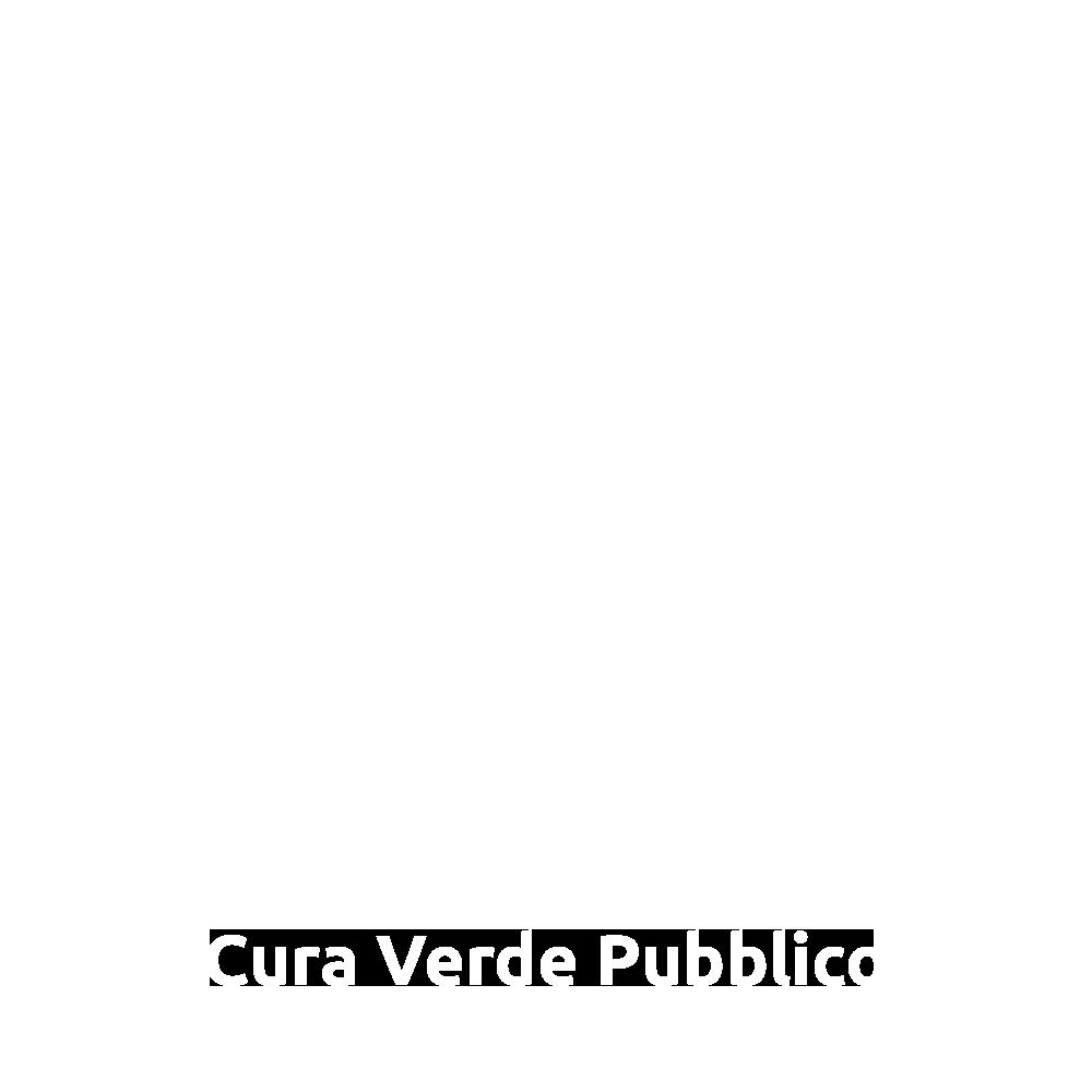 verde-pubblico